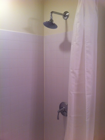 New guest bath shower