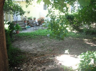Landscaping before - rear 2