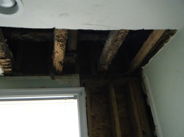 Selective ceiling demolition